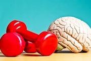افراد سالمند اینگونه هوشیاری ذهن خود را تقویت کنند