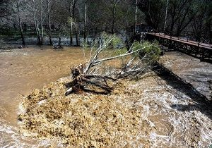 هشدار؛ احتمال تگرگ و سیلاب در برخی مناطق کشور