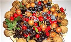 پای انار آفریقا به بازار میوه رسید