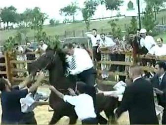 فیلم افتادن اردوغان از روی اسب