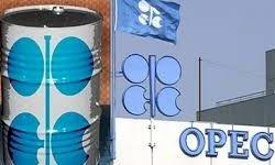 نفت اوپک افزایش یافت