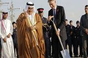 روباه پیر در بحرین لانه کرد