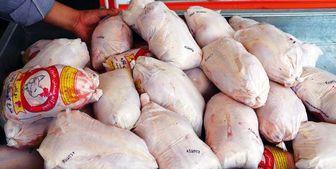 آغاز عرضه گسترده گوشت مرغ در سراسر کشور