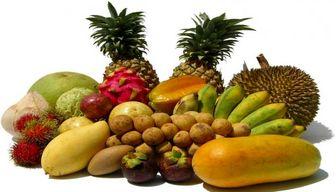 واردات شش میوه به کشور آزاد شد