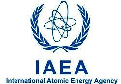 مسئول فشار بر آژانس انرژیاتمی علیه ایران کیست؟