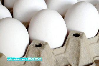 تخم مرغ صنعتی یا محلی، کدام سالم تر است؟
