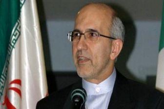 ایرانیان باید از قوانین داخلی گرجستان مطلع شوند