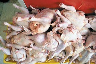 کاهش ۴۰۰ تومانی نرخ مرغ در بازار