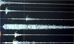 شهروندان باید نکات ایمنی را طی یک هفته تا ۱۰ روز بعد از یک زلزله رعایت کنند