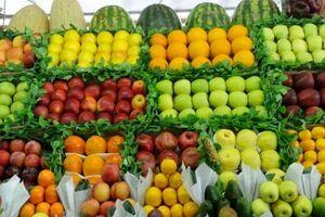 سود غیرمتعارف دلالها از بازار میوه و تره بار