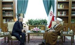 دیدار هاشمی رفسنجانی با سفیر روسیه در ایران
