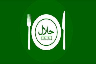 گردش مالی ۴هزار میلیارد دلاری غذای حلال در دنیا