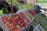 افزایش قیمت نهادههای تولید، گرانی میوه را رقم زد