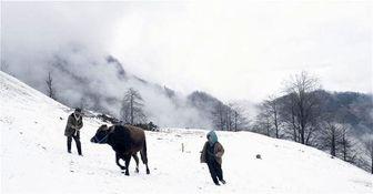 استقبال از فصل سرما با آمادگی کامل در البرز