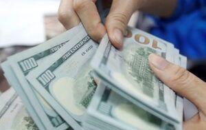 دلار ۴۲۰۰ تومانی منجر به ثبات قیمت کالاهای اساسی نشد