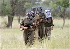 4 نظامی ترکیه در درگیری مرزی با پکک کشته شدند