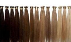 رکورددار بلندترین موی جهان کیست؟ +عکس
