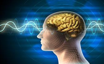 کلینیک تخصصی مغز در مرکز جامع توانبخشی هلال احمر راه اندازی شد