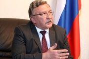 واکنش اولیانوف به توقف اجرای پروتکل الحاقی توسط ایران