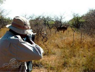هشدار جدی اداره محیط زیست جلفا به شکارچیان متخلف