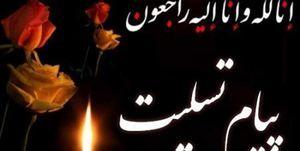 صدور پیام تسلیت نیروی انتظامی در پی درگذشت آیت الله هاشمی شاهرودی