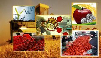 نقش روستاها در افزایش رونق تولید کشور