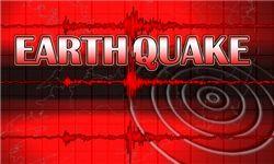 زلزله ۶.۵ ریشتری نیوزلند را لرزاند
