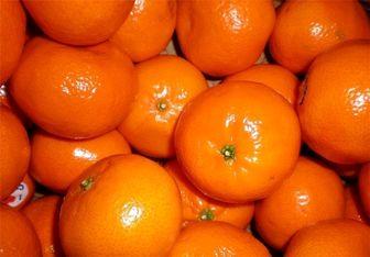 قیمت فروش انواع میوه های پاییزی در بازار