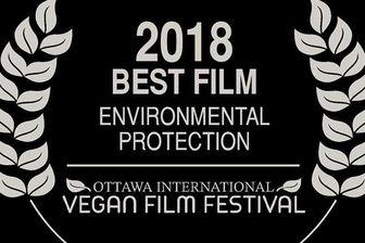 مستند ایرانی از جشنواره کانادایی جایزه گرفت