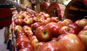 این میوهها عوامل سرطانزا دارند