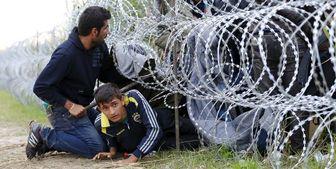 یونان، مهاجران را برهنه به ترکیه فرستاد
