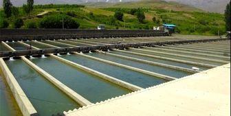تاکید وزیر جهاد کشاورزی بر توسعه طرح پرورش ماهی در دریا