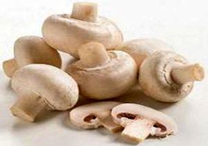 قیمت قارچ در بستهبندیهای متفاوت + جدول