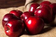 باغ های سیب در کهگیلویه و بویراحمد/ عکس