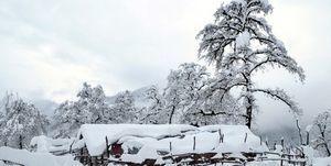 """آغاز """"بارش برف"""" در برخی مناطق کشور"""