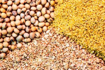 مشکلات سامانه بازارگاه نهاده های کشاورزی