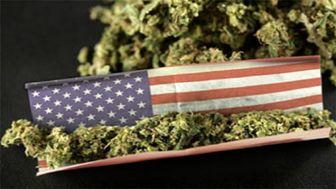 استفاده از ماریجوآنا در یک ایالت دیگر آمریکا قانونی شد