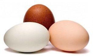 چند نکته مهم در مورد تخم مرغ