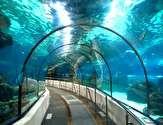 ایستگاه مترویی جالب و باورنکردنی در اعماق آب/ تصاویر