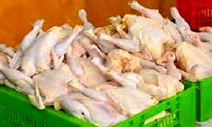 قیمت انواع گوشت و مرغ + جدول