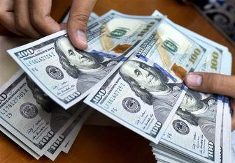 کینه خرسها از دلار تمامی ندارد