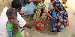 رسوایی بزرگ برنامه جهانی غذا در یمن