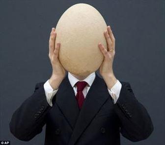 بزرگترین تخممرغ دنیا را چند خریدند؟! + عکس