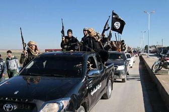 تشابه اقدامات نژادپرستان و داعشی ها