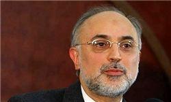 صالحی: موفقیت مذاکرات مدیون بینش سیاسی رهبری است