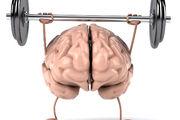 تست خودشناسی؛ نیمکره راست مغز شما فعال تر است یا چپ؟