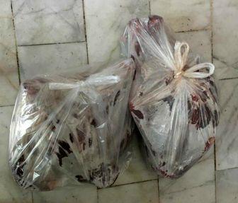 کشف لاشه قوچ وحشی درشرق تهران