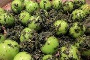 معجزه این میوه سبز در لاغری