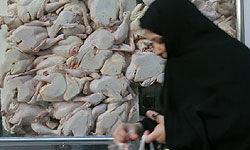 افزایش ۱۰.۲درصدی گوشت مرغ طی یک هفته