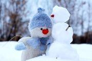 زمستان آرام آرام می رود ...
